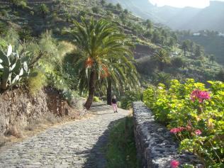 Hola_Tenerife_2011 061